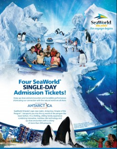 seaworld 7th display pic